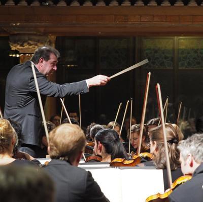 Concerts al Palau